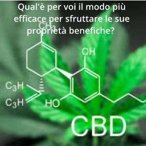 CBD effetti